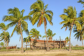 Boatyard in Belo sur Mer, madagascar