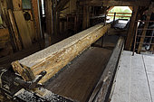 Haut Fer sawmill dating from 1878, the carriage, Territoire de Belfort, France