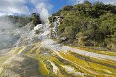 Orakei-korado geotermic place, Taupo Volcanic, Zone, North Island, New Zélande