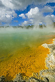 Wai-o-Tapu geotermical place, Taupo Volcanic Zone, North Island, New Zeland