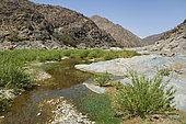 Wadi Tourabah, Assir Mountains, Saudi Arabia