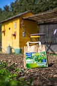 Sac de graines de plantes protectrices, Jardin potager, Provence, France