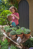 Young woman in the middle of a collection of herbs, vegetable garden, Provence, France