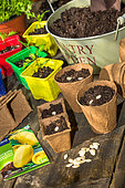 Sowing table, Vegetable garden, Provence, France