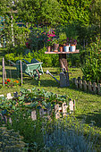 Wooden table with herbs in pots, wheelbarrow and watering can, Vegetable garden, Provence, France