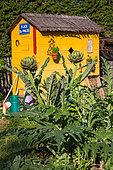 Hut and Artichoke plant, Vegetable garden, Provence, France