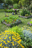 Bartholomew Squares and Aromatic Plants, Vegetable Garden, Provence, France