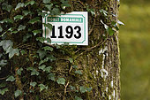 Panel on a tree in the forest of Chaux towards Dole, Jura, France