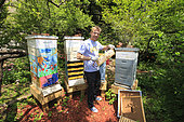 """Urban Beekeeping - Adam Johnson, 35 years old, associate lawyer in a New York law firm, looks after four hives in a neighboring community garden. """"The New York City Beekeepers' Association to which I belong thinks there are about a hundred hives in New York. But, that's only counting our group and the known beekeepers. If you add people of Mexican and Puerto Rican origins, who have rural roots, and other groups of young people, the figures could get as high as 500 hives."""" USA"""
