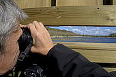 Observation with binoculars from an observation point in the ornithological reserve of Grand Laviers, Baie de Somme, France,