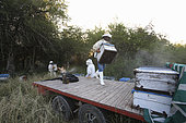 Boatmen's beekeepers of the Parana Delta. The evening before leaving for the islands, Carlos goes to get his hives two hours from Victoria, on a field belonging to a childhood friend, a cattle raiser. Argentina