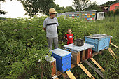 Ionel Farcas Cozmin, 54 years old, from Mures in Transylvania, with his grandson Catalin in front of the hives. Romanian traveling beekeepers, Romania