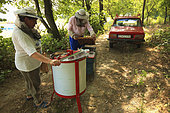 For this couple of amateur beekeepers who only possess a few hives, the harvest takes place outside next to their old Logan. Romanian traveling beekeepers, Romania