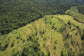 Vue aérienne de la déforestation près de San Vito au Costa-Rica. En dehors des parcs nationaux, les forêts primaires et secondaires sont souvent rasées pour faire place à des plantations de palmiers à huile ou d'ananas. Le monde tropical des abeilles sans dard