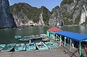 Boats in Halong Bay to brin tourist around, Vietnam