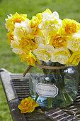 Narcissus Le Torch, Lingerie