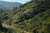 Drobie Valley on the edge of the Cévennes, France