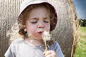 Littel girl blowing dandelion seeds in a meadow