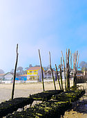 Oysters parks in low tide and colored houses, village of the Herbe, commune of Lège Cap Ferret, Gironde, Basin of Arcachon, France