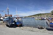 Puerto del Hambre, Magellan Strait, XII Magallanes and Chilean Antarctic Region, Chile