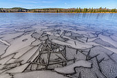 Ice marquetry in early winter, Lake Bellefontaine, Jura, France