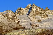 Glacier of the Tour from Les Cheserys, Massif des Aiguilles Rouges, Massif du Mont Blanc, Alps, France