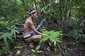 Man presenting a plant, Galanga or Chinese ginger (Alpinia officinarum) used to cure stomach problems, Pulau Siberut, Sumatra, Indonesia