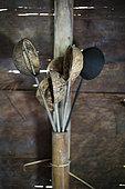 Kitchen tools made from coconut, Pulau Siberut, Sumatra, Indonesia