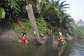 Women fishing with landing net, Pulau Siberut, Sumatra, Indonesia