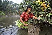 Woman fishing with landing net, Pulau Siberut, Sumatra, Indonesia