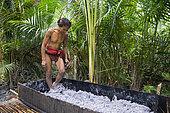 Man crushing sapoutier pulp with his feet to make sago flour, basic nourishment to the Mentawai people, Pulau Siberut, Sumatra, Indonesia