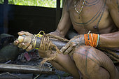Man keeping his arrows in a holster before going hunting, Pulau Siberut, Sumatra, Indonesia