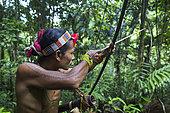 Amantari, 39, hunting with his bow and poisoned arrows, Pulau Siberut, Sumatra, Indonesia
