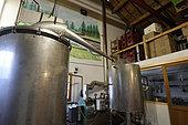 Distillation of common spruce (Picea abies), alembic, Ferme du Bien Etre, producer of essential oils, herbal tea, Le Beillard, Gerardmer, Vosges, France