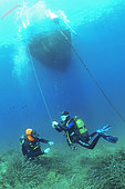 Control of the holding of the surface parachute, Diving site of the Sea Lion, Saint-Raphaël, Var, France