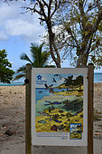 The marine environment, Conservatory of the coastline panel, Guadeloupe
