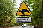 Information panel on the crossing of marine turtles, Guadeloupe National Park