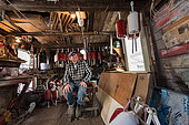 Ernest Burgess, a 74 year old lobsterman in his winter fishing shack, painting lobster buoys and holding a hand made wood hunting duck. Chebeague Island, Maine