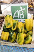 Peppers from organic farming on a Provencal market in summer, France
