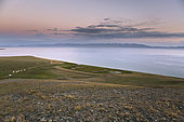 Lac Song Kol et campement de yourtes, Massif des Tian Shan, Province de Naryn, Kirghizistan