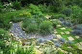 Wild garden with Terracotta path surrounded by Kidney weed (Dichondra repens), Fescue (Festuca glauca) 'Intense blue', Ariege, France