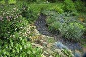 Wild garden with Fortune meadowsweet (Spiraea japonica) 'Shirobana', Little Bluestem (Schizachyrium scoparium) 'Blue Heaven', Pineapple Lily (Eucomis autumnalis), Slate alley Ariege, France
