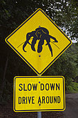 Driver Warning Sign on Road Side, Birgus latro, Christmas Island, Australia