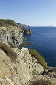 Cliffs in Porquerolles Island with, at the bottom, the island of Port-Cros, Hyères, Var, France