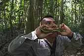 Guide forestier Isaac Pizarro imitant l'appel d'une Harpie féroce, Parc National du Darién, Panama