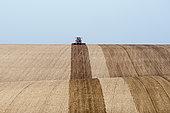 Tractor ploughing rolling farmland near Docking, North Norfolk, England, March