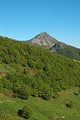 Parc des volcans d'Auvergne, France