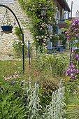 Spring flower bed. House. Mainly blue garden. France