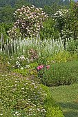 Spring flower bed: Fireweed (Epilobium angustifolium), Spirea (Spiraea sp), Rose (Rosa sp). Jardin du Zéphyr, France