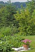 "Aquatic plants and Pelargonium pot. ""Jardin du Zéphyr"", Burgundy, France"